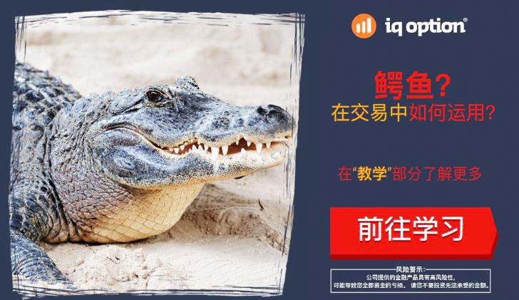 二元期权指标-IQ Option期权鳄鱼线指标